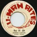 Ronnie Davis (Romie Pickett) - Way Of Life (U Man Rites)
