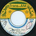 Teddy Magnus - Beautiful Day (Trans Am)