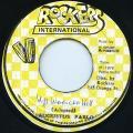 Augustus Pablo - Up Waricka Hill (Rockers International 2nd)