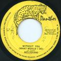 Melodians - Without You (What Would I Do) (Panther)