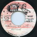 Heptones - Meaning Of Life (GG's Hit 2nd)