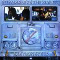 Bob Marley, Wailers - Babylon By Bus (2LP)