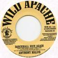 Anthony Malvo - Dancehall Nice Again