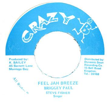 Briggey Paul - Feel Jah Breeze (7