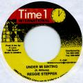 Reggie Stepper - Under Mi Sin Ting