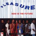 Pleasure - Now Is The Future: The Best Of Pleasure Vol 2
