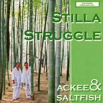 Stilla Struggle