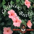 Gladstone Anderson - Caribbean Breeze (Japanese Press)
