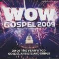 Various - Wow Gospel 2009: 30 Of The Year's Top Gospel Artists And Songs (2 CD)