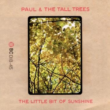 Little Bit Of Sunshine (Picture Sleeve) / Once In A While