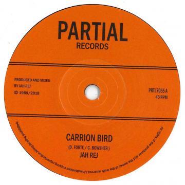 Carrion Bird / John Crow