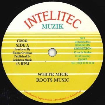 ReggaeRecord com | Reggae & Black Music On-line Shop: Dub Store Records