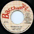 Mr Vegas - Higher We Go (Bacchanal JPN)