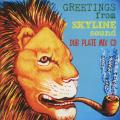 Skyline Sound - Greetings From -Dub Plate Mix-