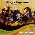Gladiator Sound System - Now & Forever: Words Of Love