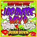 Burn Down - Burn Down Style Japanese Mix 9