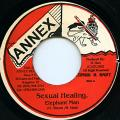 Elephant Man - Sexual Healing (Annex)