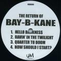Bay B Kane - Hello Darkness; Ravin' In The Twilight