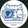 Danny Red - Where Have All The Rebels Gone; Dub Rock