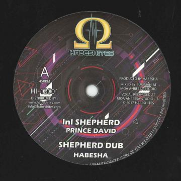 Ini Shepherd; Shepherd Dub / In Awe; Awe Dub