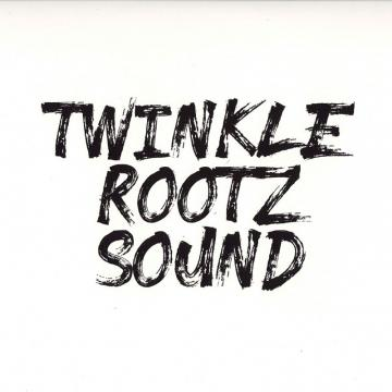 Twinkle Rootz Sound; Raw Cut Dubplate / Everyday Is A Struggle; Instrumental