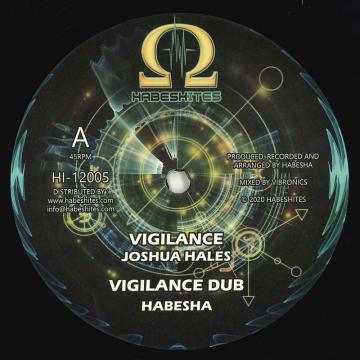 Vigilance; Vigilance Dub / Afrikan Warrior; Vigilant Warrior