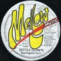 Barrignton Levy - Settle Down (Extended Mix)