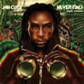 Jah Cure - Never Find (Interface Remix) (Picture Sleeve)