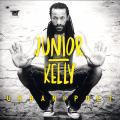 Junior Kelly - Urban Poet (2LP)