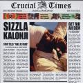 Sizzla - Crucial Times