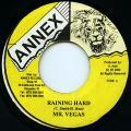 Mr Vegas - Raining Hard (Annex)