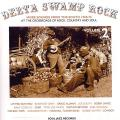 Various - Delta Swamp Rock Volume 2: More Sounds From The South (2 LP)