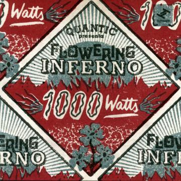 Quantic Presenta Flowering Inferno: 1000 Watts