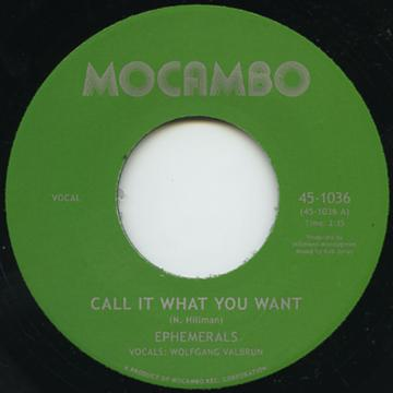 Ephemerals - Call It What You Want (7