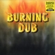 Revolutionaries - Burning Dub (180g)
