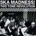 Various - Ska Madness: 20 Reggae Classics Which Inspired The Two Tone Revolution
