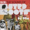 Various - Sound Of Bstrd Boots Compiled & Mixed By DJ DRM